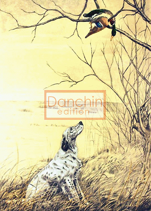 English Setter And Duck French Engraving Dog Print By
