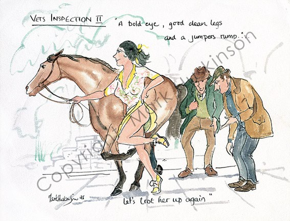 Horse Vet Cartoon Vet 39 s Inspection ii Horse