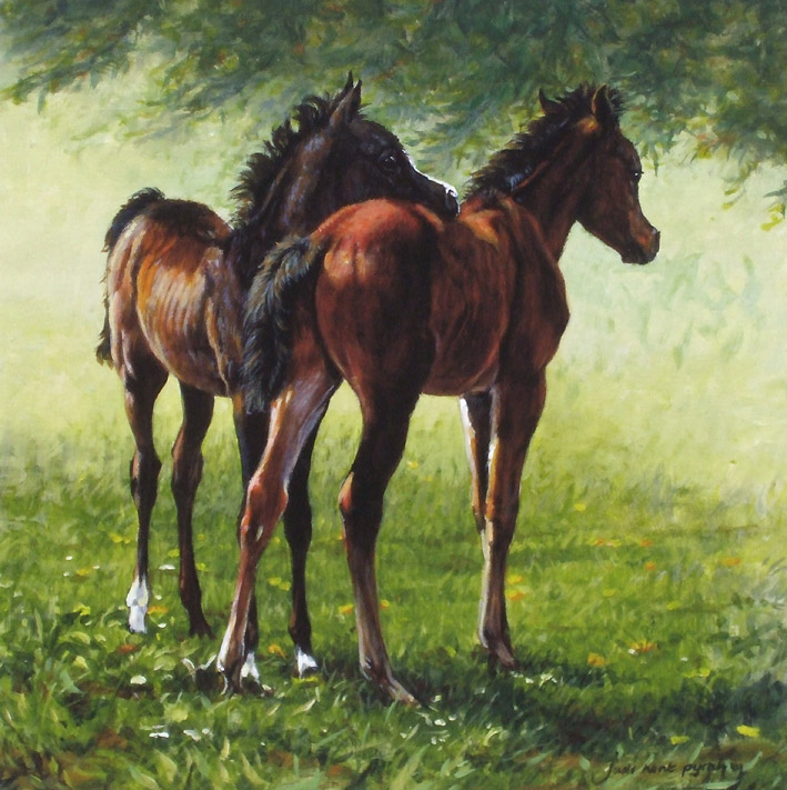 Arabian Foals Limited Edition Print By Equestrian Artist