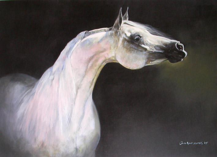 Into The Light Limited Edition Arabian Horse Print By