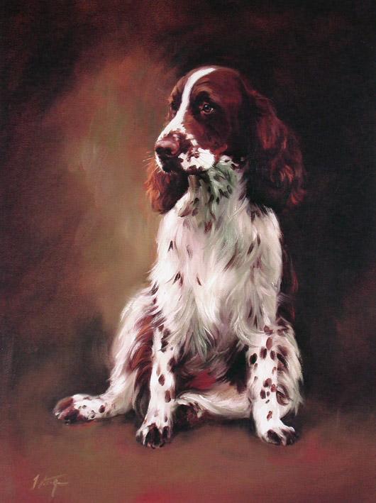 English Springer Spaniel Limited Edition Dog Print By