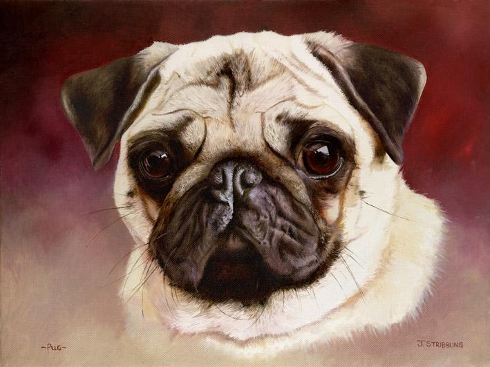 Pug Original Oil Painting By Equestrian Artist Joanna