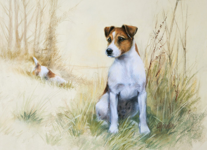 Smooth Haired Jack Russell Terrier Limited Edition Dog